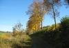 oberkirchen_-_golddorf_route_oberkirchen_7707
