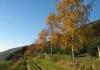 oberkirchen_-_golddorf_route_oberkirchen_7713