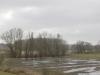 Ooij: De Gelderse Poort - Ooijpolder