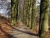 Arnhem: Mariëndaal