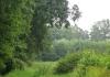 oosterhuizen_-_albapad_9319
