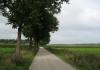 ospeldijk_-_de_groote_peel_6555