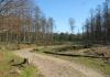 Otterlo_-_Oud_Rees_en_Planken_Wambuis_0472