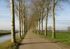park_lingezegen_-_elst_-_arnhem_7849