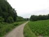 Pelgrimspad: Grevenbicht - Spaubeek