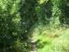 Pelgrimspad: Schin op Geul - Gronsveld