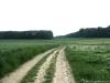 Pelgrimspad: Spaubeek - Voerendaal