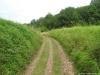 Pelgrimspad: Voerendaal - Schin op Geul