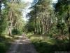 Pieterpad: Holten - Hellendoorn