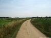 Pieterpad: Swolgen - Venlo