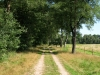 Pieterpad: Vorden - Laren