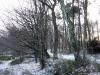 Rheden: Kamerdalsche Berg en Beekhuizer Beek