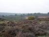 Rheden: Posbank en Herikhuizerveld