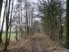 Rijssen - Holten: NS wandeling Ligtenbergerveld