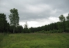 rothaarsteig_-_hainchen_-_rodenbach_8975