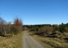 rothaarsteig_-_niedersfeld_-_winterberg_7727