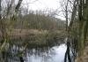 Santpoort_-_Overveen_-_NS_Wandeling_Kennemerduinen_5367