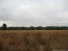 Schaijk: De Maashorst