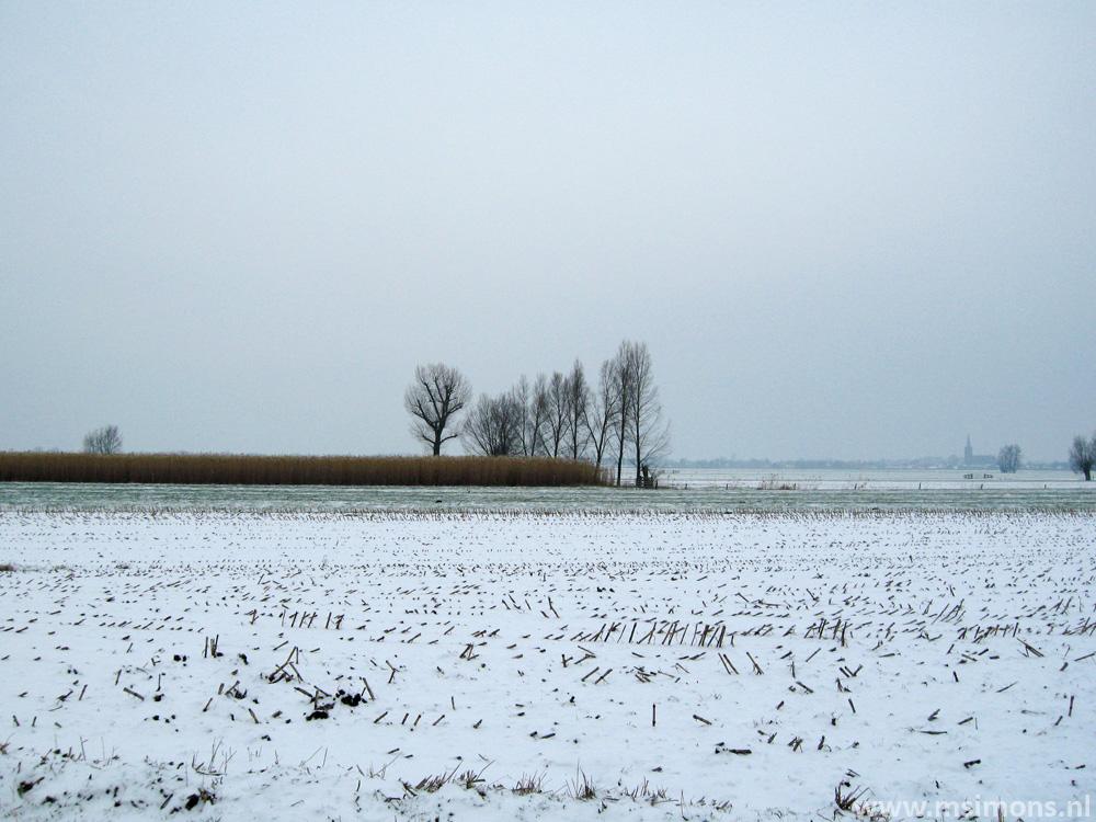 schalkwijk_-_lint-_en_liniepad_9512