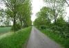 Sint_Philipsland_-_Rammegors_5771