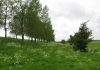 Sint_Philipsland_-_Stinkgat_5787