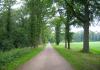 slijk-ewijk_-_de_loenense_buitenpolder_9825