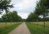 slijk-ewijk_-_de_loenense_buitenpolder_9829