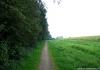 soest_-_korte_en_lange_duinen_7629