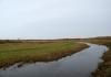 Texel_-_Duinen_van_Texel_5273