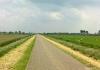 Trekvogelpad_-_Alkmaar_-_Noordeinde_142323
