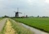 Trekvogelpad_-_Alkmaar_-_Noordeinde_144559