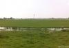 Trekvogelpad_-_Alkmaar_-_Noordeinde_150417