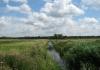 trekvogelpad_-_amsterdam_gaasperpark_-_naarden_6134
