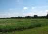 trekvogelpad_-_amsterdam_gaasperpark_-_naarden_6139