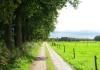 trekvogelpad_-_austerlitz_-_langbroek_6408