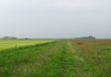 Trekvogelpad_-_Bergen_aan_Zee_-_Alkmaar_5873
