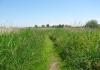 Trekvogelpad_-_Haaldersbroek_-_Landsmeer_5943