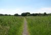 Trekvogelpad_-_Haaldersbroek_-_Landsmeer_5950