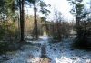 Trekvogelpad_-_Hoenderloo_-_Loenen_6810