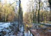 Trekvogelpad_-_Hoenderloo_-_Loenen_6816
