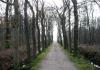 trekvogelpad_-_loenen_-_brummen_6823