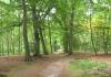 trekvogelpad_-_naarden_-_hilversum_laren_6201
