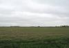 Trekvogelpad_-_Noordeinde_-_Haaldersbroek_5893