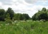 trekvogelpad_-_ransdorp_-_amsterdam_gaasperpark_6112