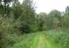 urk_-_oude_dorp_en_urkerbos_6663