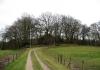 Veluwe_Zwerfpad_-_Arnhem_-_Rozendaal_5199