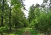 Vorden_-_Almen_-_Landgoed_Enzerinck_en_het_Warkensche_Veld_5807