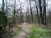 Wehl: Montferland