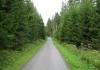 winterberg_-_siedlinghausen_6337