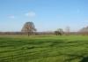 winterswijk_-_steengroeve_-_grenspad_en_ratumse_beek_7941